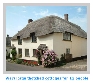 large thatched cottages to sleep 12