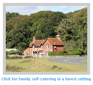 family self catering holidays in a forest setting