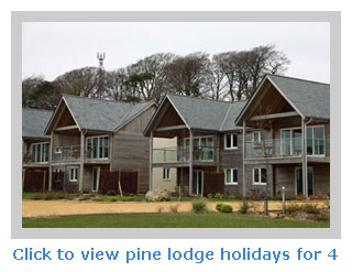 Pine lodge holidays for families