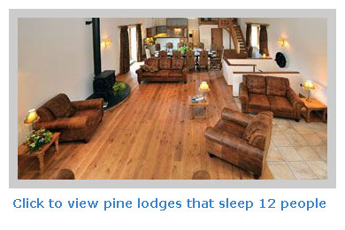 pine lodges to rent for 12